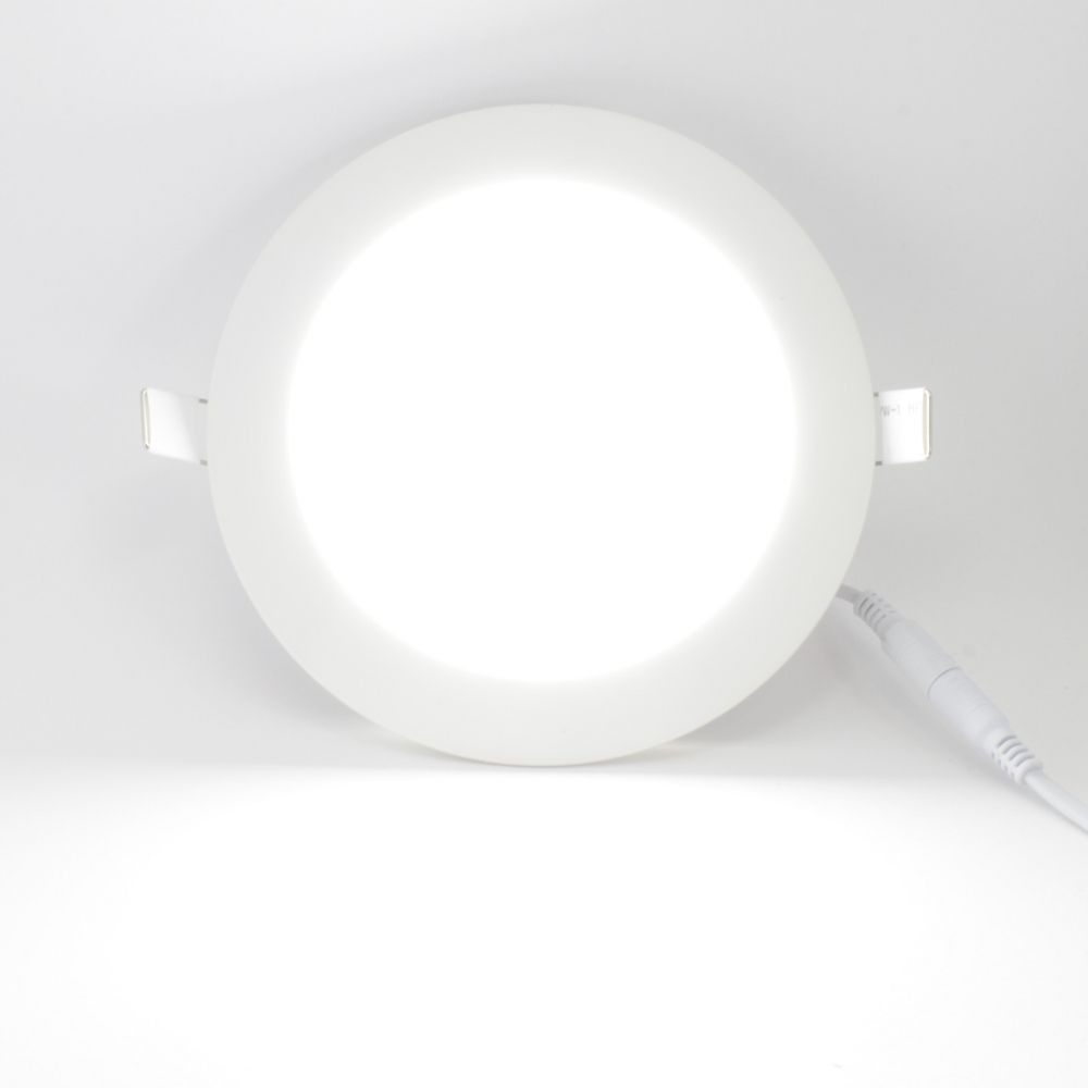 18w runde ultraslim led panel einbaustrahler deckenleuchte lampe trafo d nn ebay. Black Bedroom Furniture Sets. Home Design Ideas