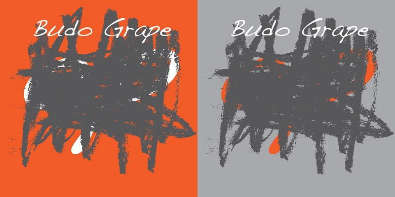 Budo Grape Releasing 2 new Singles In This March