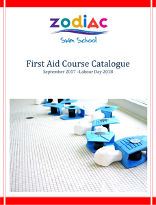First Aid Training Toronto Ontario
