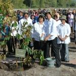 jokowi didampingi Gubsu dan Bupati Tobasa menenam pohon1-800x544