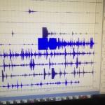 Gempa Susulan