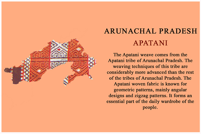 apatani from arunachal pradesh