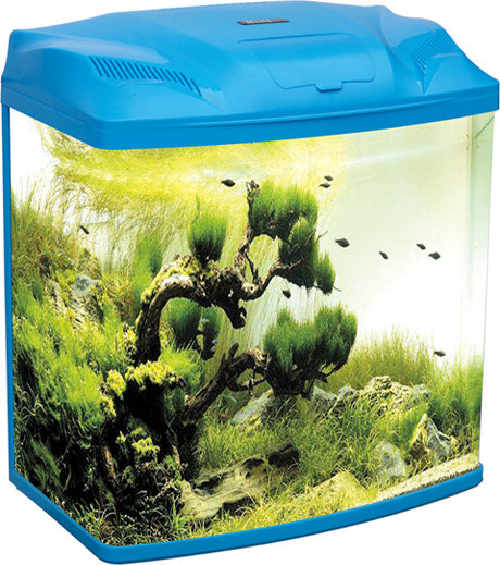 Five Star – Blue Mini Series Fish Tank