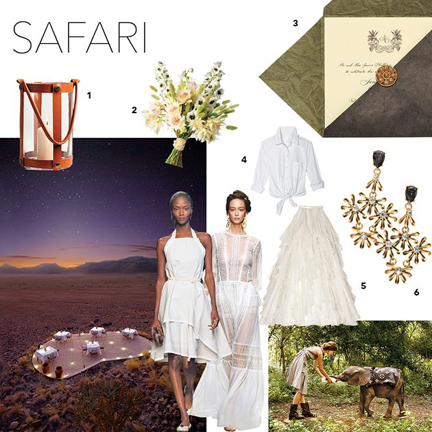 safari-mood-board