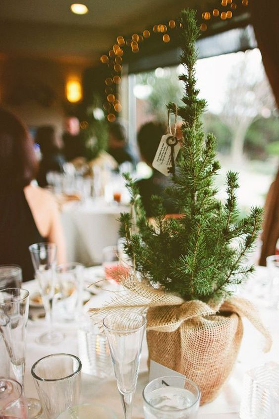 31-use-small-pine-trees-as-simple-rustic-centerpieces-wrapped-in-heavy-burlap