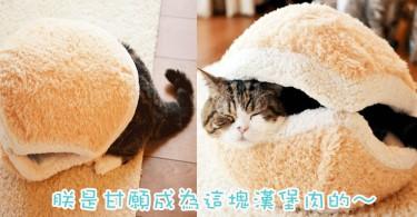 來一客貓漢堡!專為主子而設~漢堡包造型貓貓床超可愛!