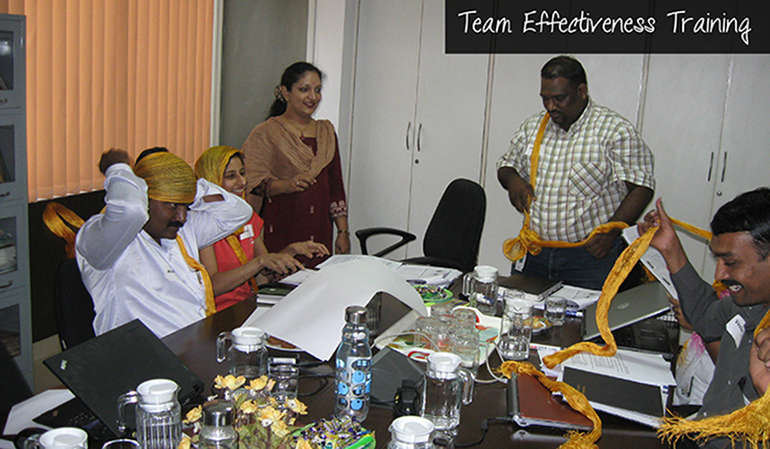 Team Effectiveness Training Usha Menon