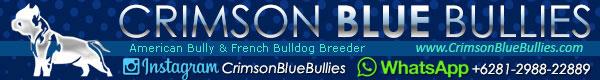 Crimson Blue Bullies