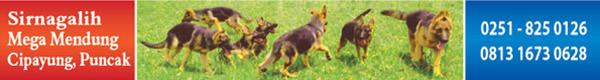 Von Leo Kennel Spesialis Anjing Herder