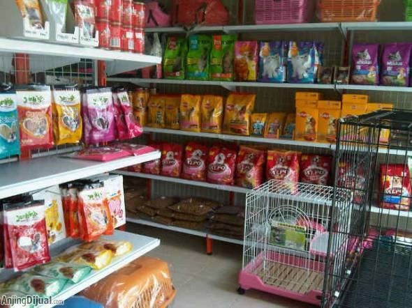 Image result for usaha pet shop