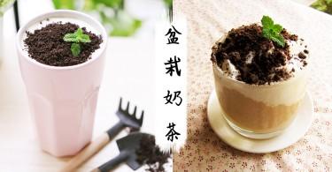 下午茶就來這一杯~可愛又迷你的盆栽奶茶,喝完超療癒的~