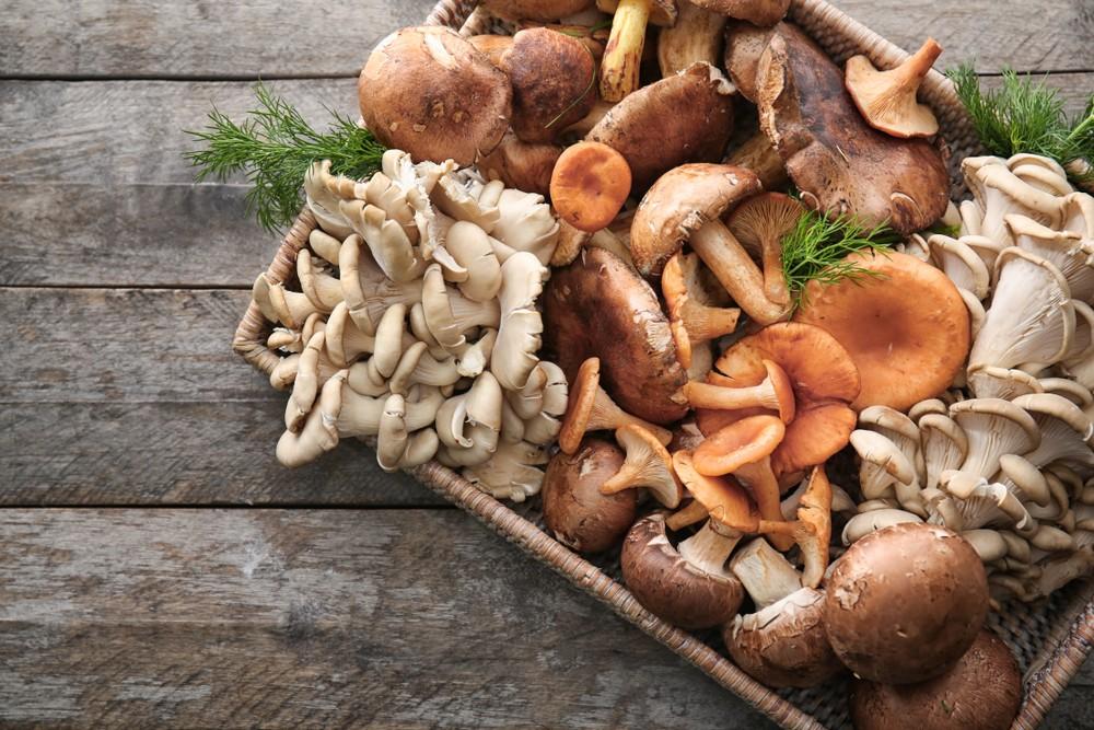 也可透过进食高脂鱼和一些蘑菇,摄取维他命D。