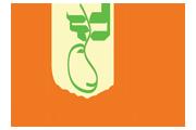 Chennai Startup