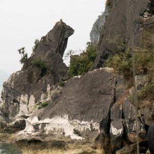 Dog Rock Ha long bay vietnam