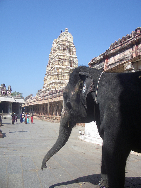 Inside the Virupaksha Temple. Credit:Klaus Nahr/ Flickr CC BY-SA 2.0