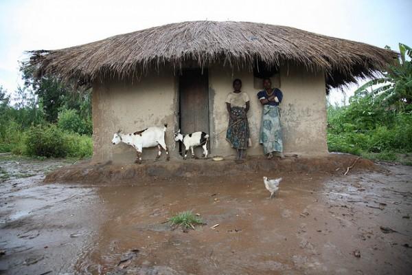 httpfloodlist-comafricamalawi-floods-17-districts-affected