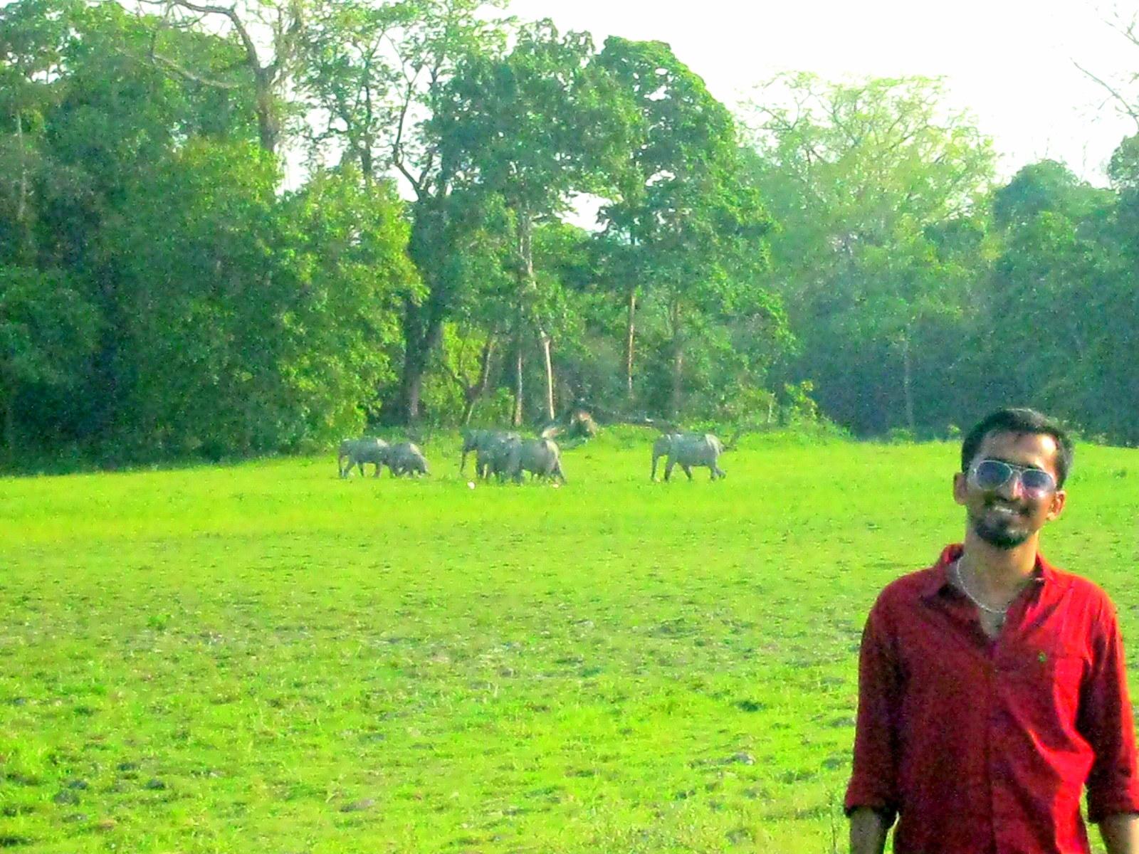 Kaziranga National Park - India Rupavath Rana Veer Samara Sihman Bharattej