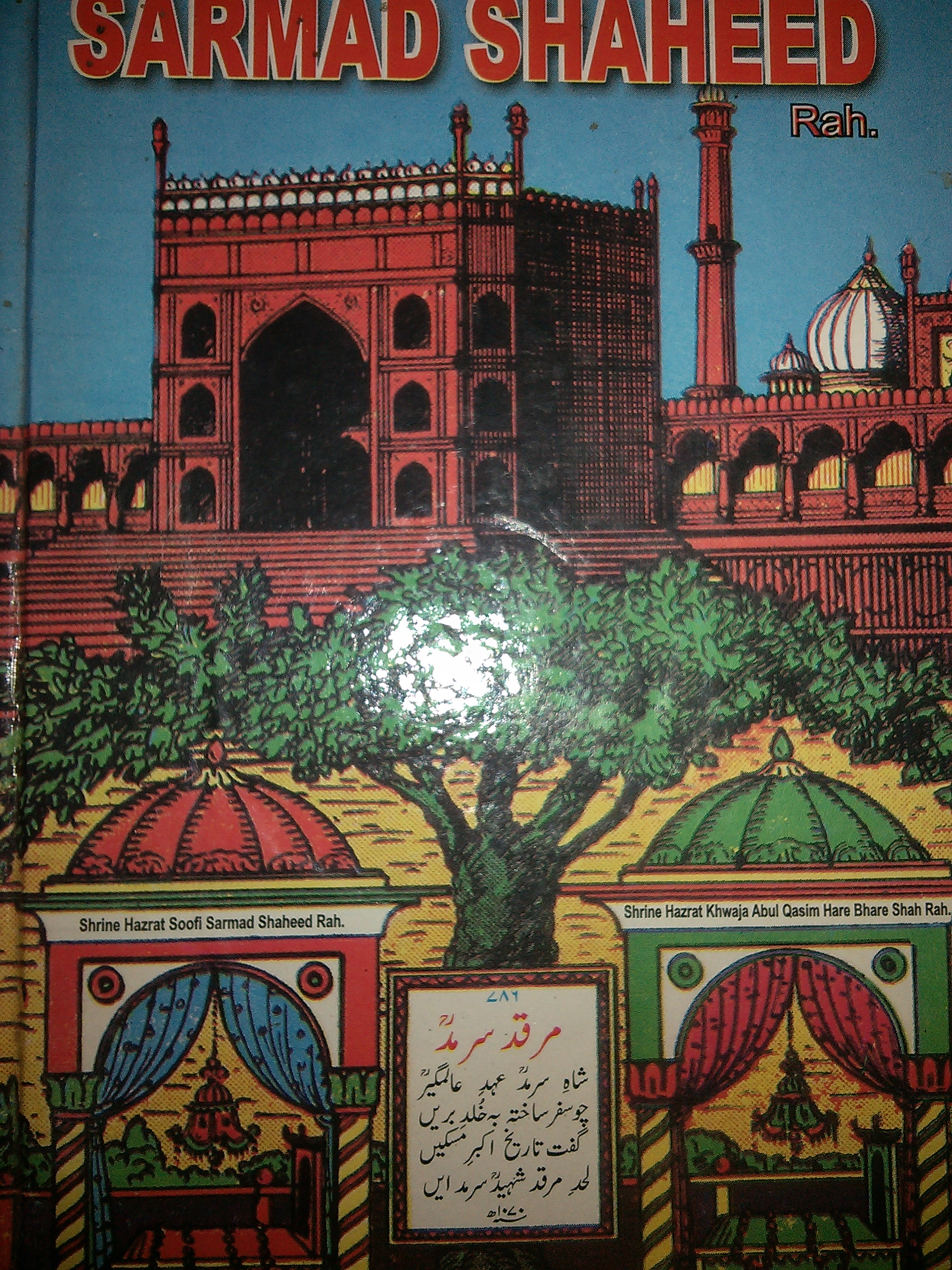 Sarmad Shaheed Cover of the booklet in English, depicting the peepal tree under which the tombs lie