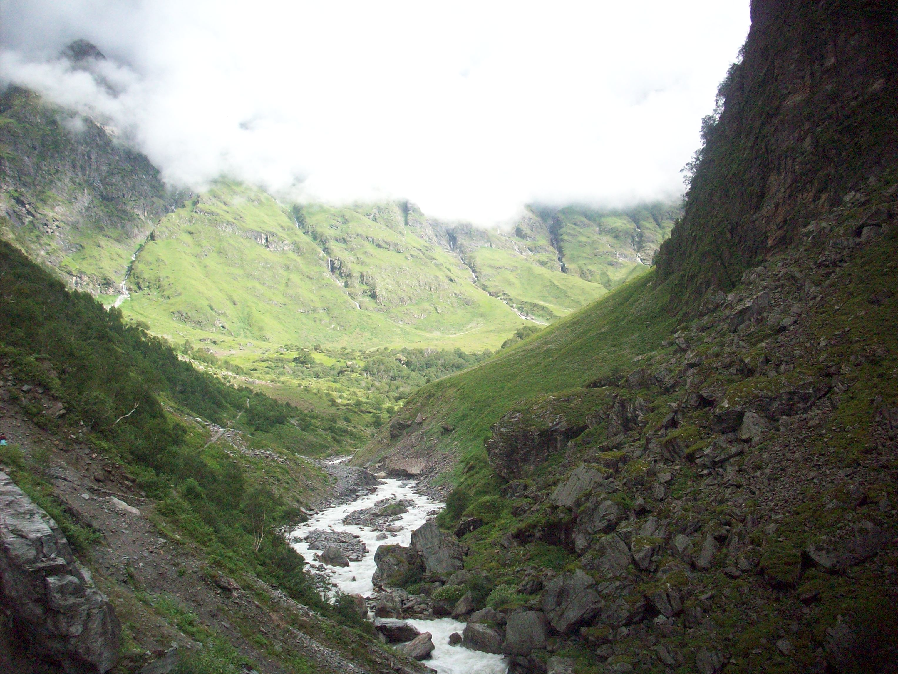 Nanda Devi and Valley of Flowers National Parks