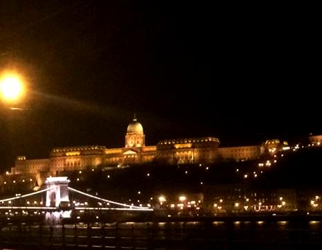 Buda Castle and Chain Bridge