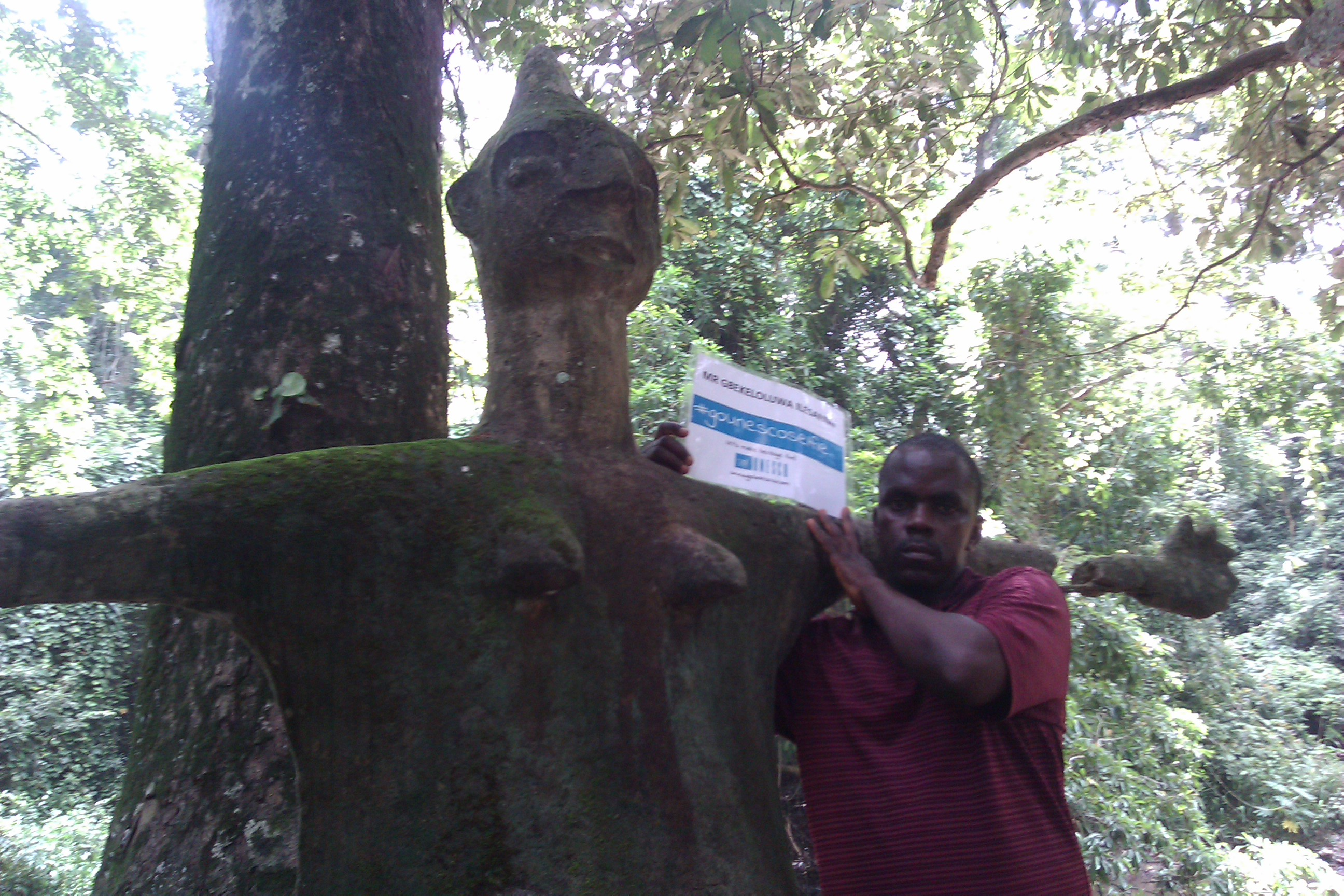 OSUN OSHOGBO SACRED GROVE GBEKELOLUWA ILESANMI