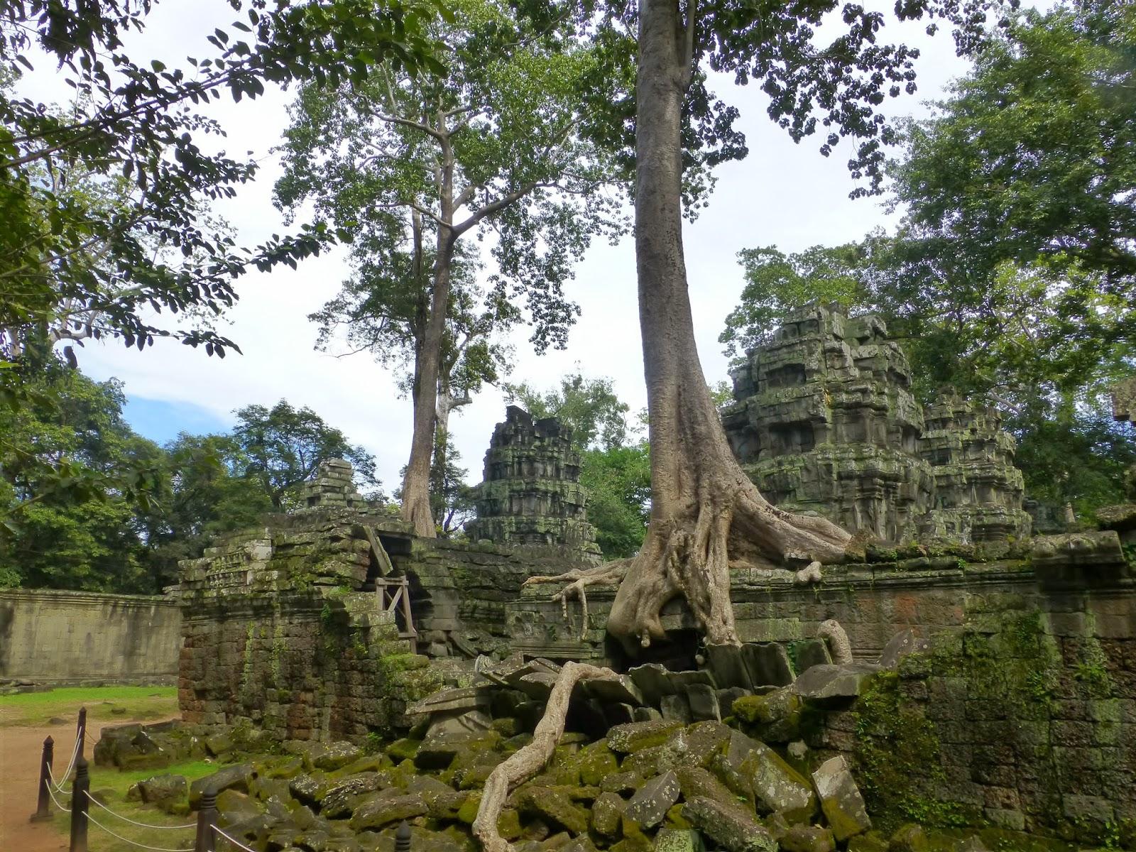 Ta Prohm Angkor Wat - Cambodia By Jacomijn