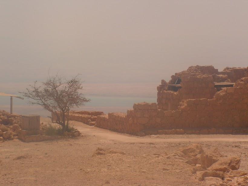 Masada - Israel By katherine brownell