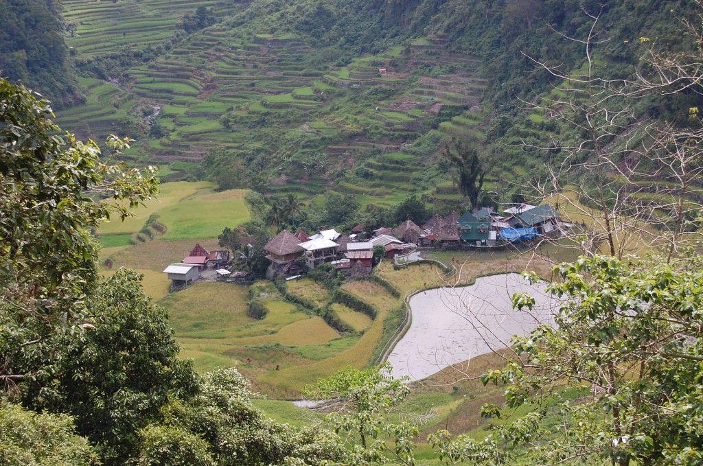 Rice Terraces of the Philippine Cordilleras