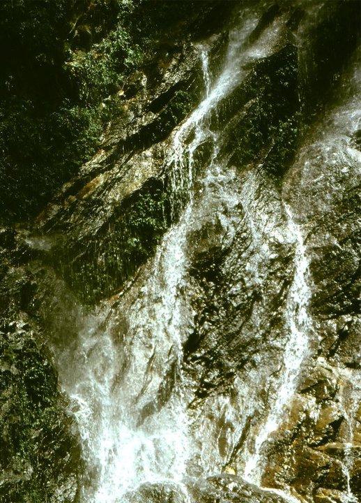osun grove
