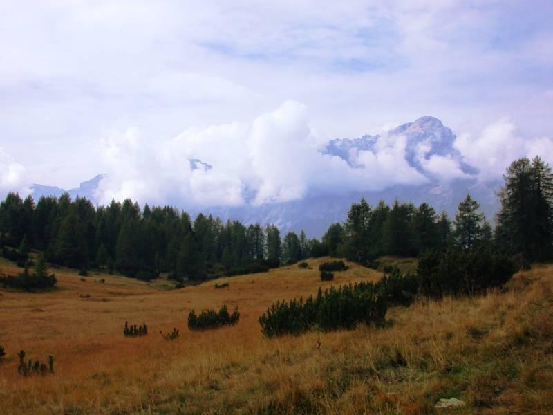 2016-05-09_57307d62e4483_Ai_piedi_del_Monte_Pelmo_-_panoramio.jpg