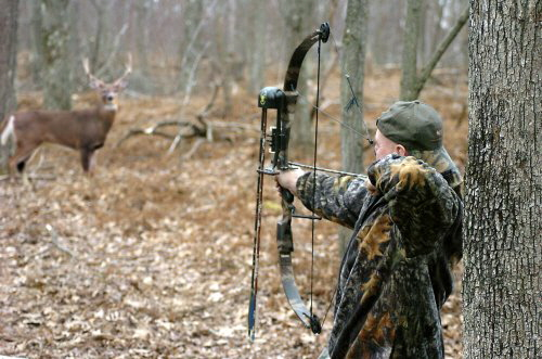 Deer hunting is survival hunting or sport hunting for deer, which dates back tens of thousands of years. Source clintoncountyinfo.com