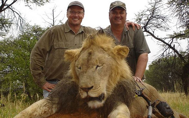 Walter Palmer who shot dead Cecil – one of Zimbabwe's most loved lions Picture Courtesy: http://i.telegraph.co.uk/