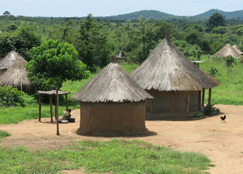 A cluster of Malawi huts. The walls of such huts are circular, and typically have only one door. Photo credit: stuartcopeland007.files.wordpress