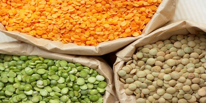 protein-rich-food-items-to-lose-weight7