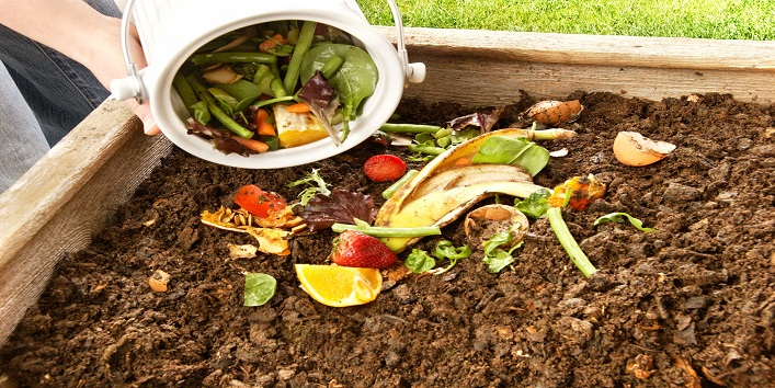 Use-the-waste-for-compost