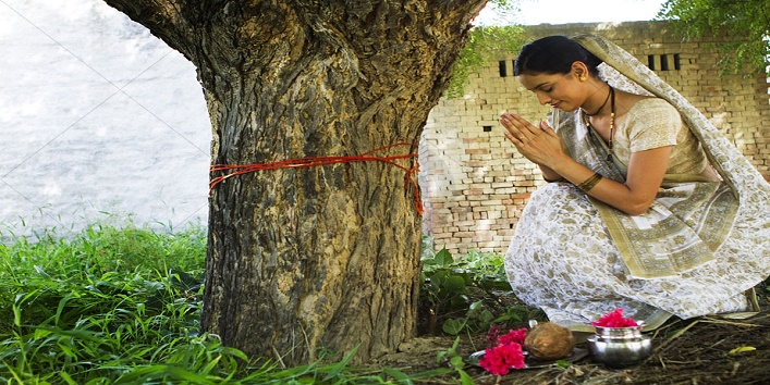 Put water in the pipal tree
