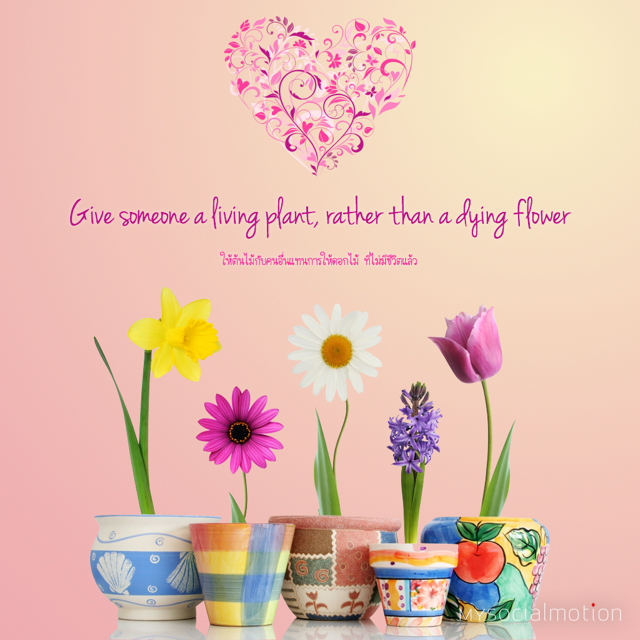 Give someone a living plant, rather than a dying flower
