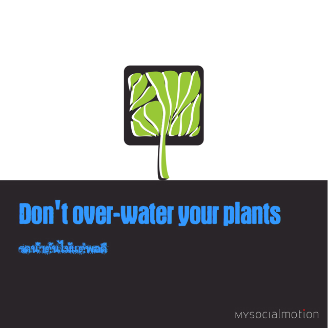 Don't overwater your plants