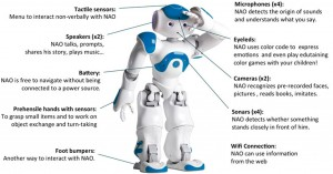 features-of-nao1
