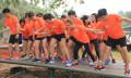 Orange Clove spons content