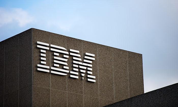 IBM performance review