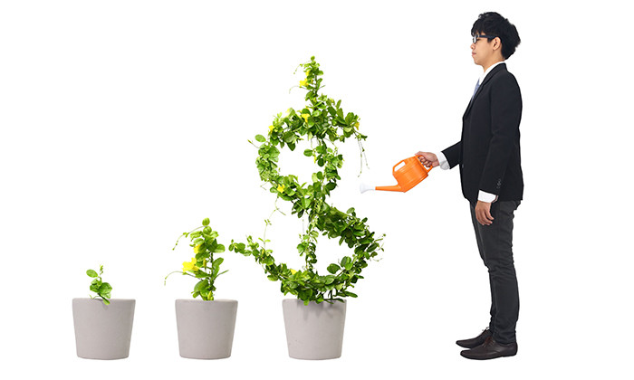 Young employee investing in finances, hr