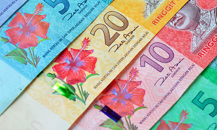 Malaysia employers to pay for levy