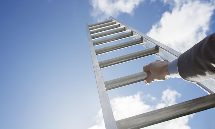 Career ladder, hr