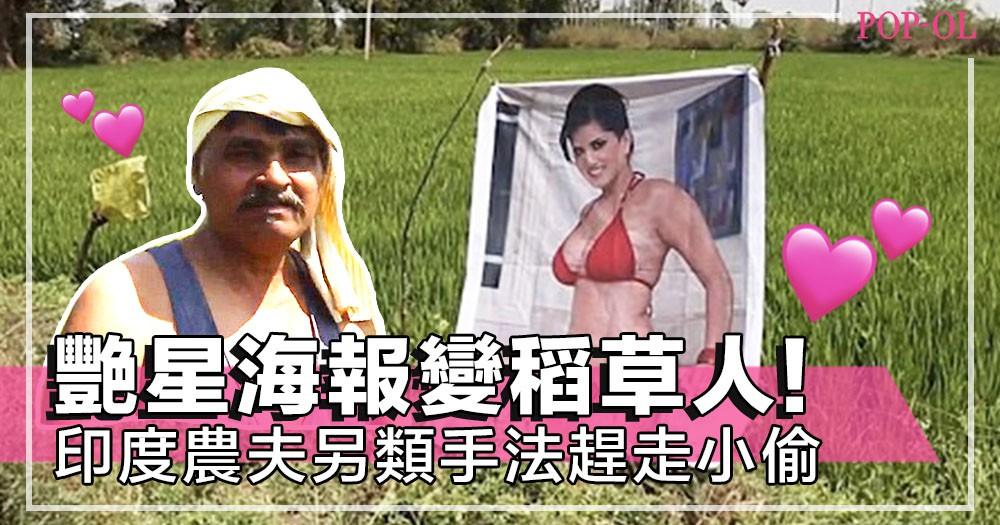 印度農夫出怪招防盜!高掛多張前成人片女星性感照~神奇地令農作物收成變好!