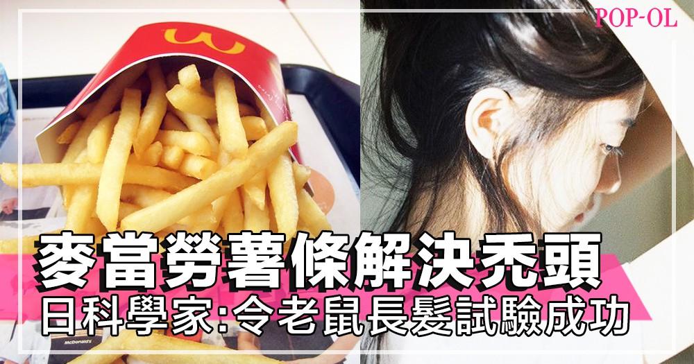 連麥當勞薯條都能解決禿頭問題!?日本科學家令老鼠身上長出頭髮試驗成功~!