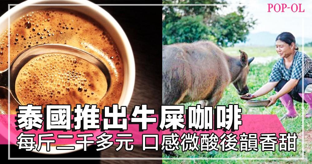 不只貓屎咖啡,泰國還推出「牛屎咖啡」,口感微酸後韻香甜,你又敢不敢試!?