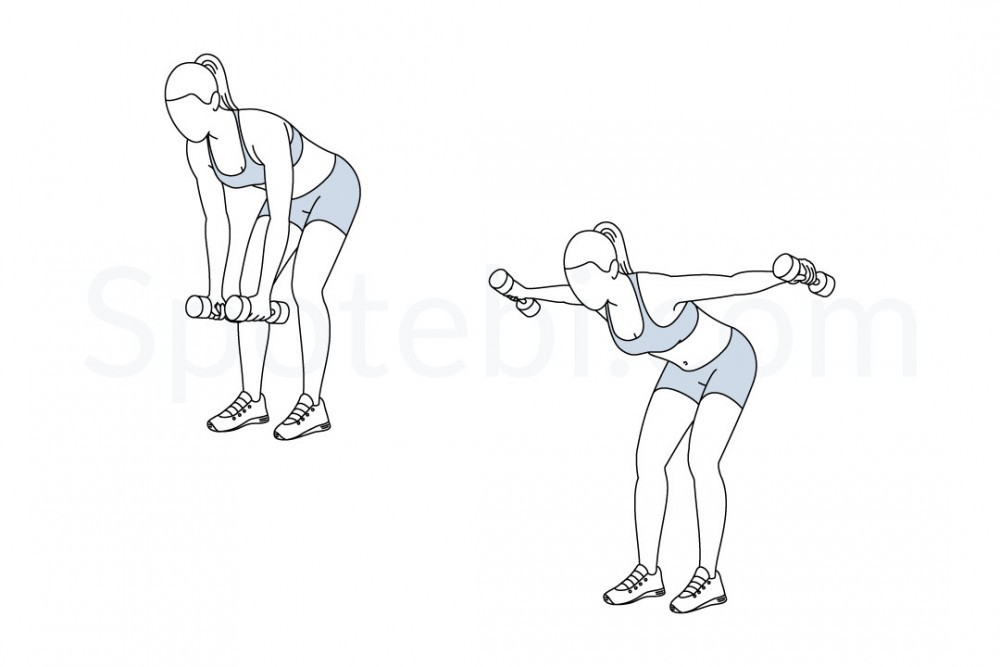 bent-over-lateral-raise-exercise-illustration