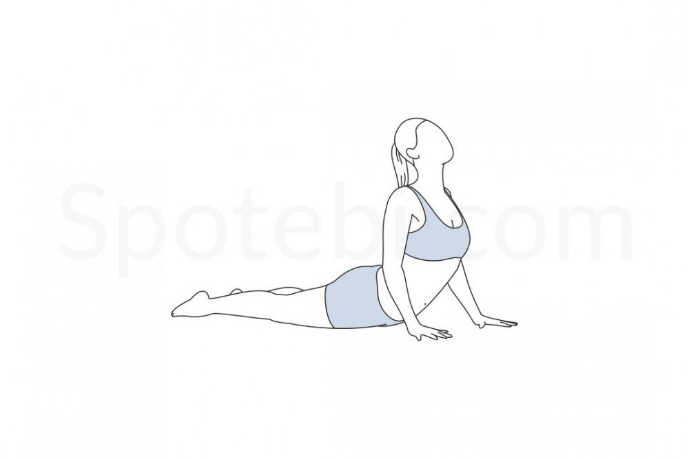 cobra-pose-bhujangasana