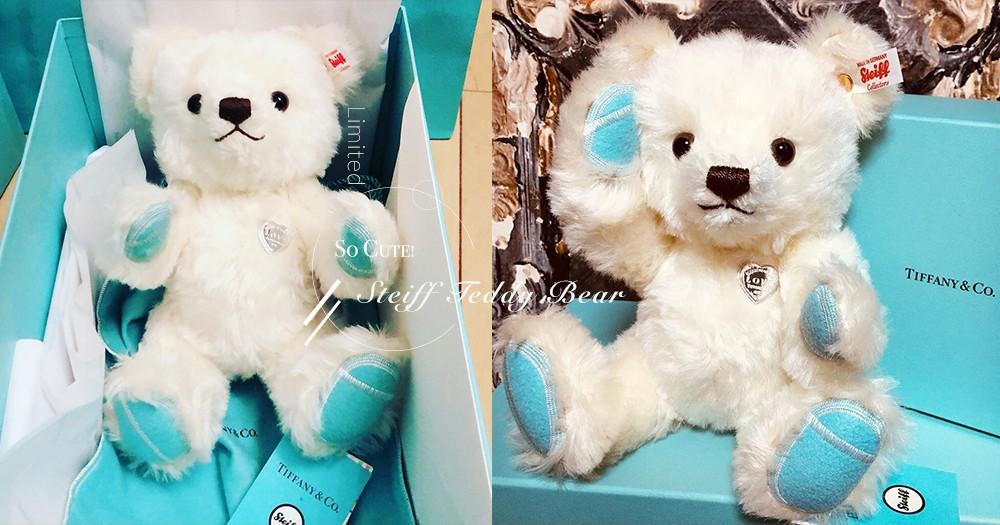 少女心被溶化!日本 Tiffany & Co.推限定白雪雪「Steiff泰迪熊」!